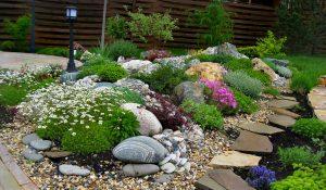 Устройство клумб и цветников